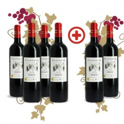 Pack Chantarel Merlot