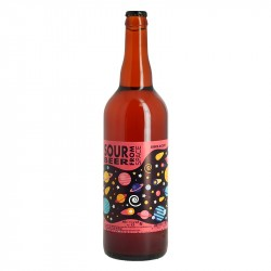 SOUR BEER FROM SPACE 75CL Edition limitée