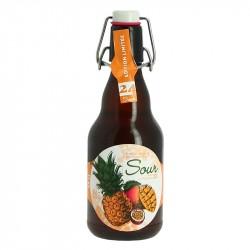 Page 24 Bière Sour aux Fruits Exotiques 33 cl Edition Limitée