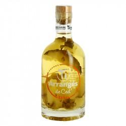 PUNCH au Rhum CED BIO Ananas 35 cl