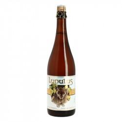 LUPULUS Bière Belge Blonde Triple 75 cl