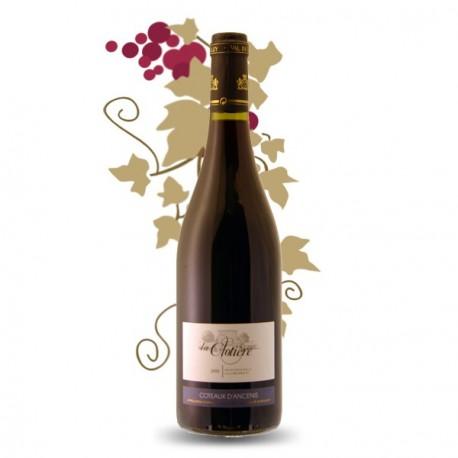 Gamay de Loire Vin Rouge de La Clotière Coteaux d'Ancenis