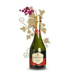 CAVA MARQUES DE MONISTROL BRUT NATURE 75 cl
