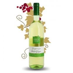 Pinot Grigio Garganega Amor Vini Vin Blanc d'Italie