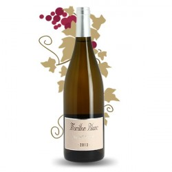 Morillon Blanc by Jeff Carrel IGP Aude 75 cl