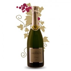 Champagne Esterlin Brut Selection 75 cl