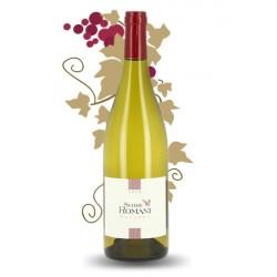 SERRE ROMANI Macabeu Côtes Catalanes Blanc 2013 75 cl