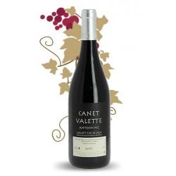 Domaine Canet Valette Antonyme BIO 2012 vin St Chinian